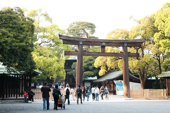 Bonyo 日本東京旅遊雪球日本寺廟、神社與神宮的一日巡禮
