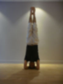 posture yoga sirsasana (sur la tête)
