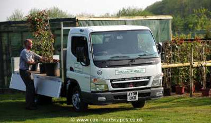 Cox Landscapes plants shrubs and trees