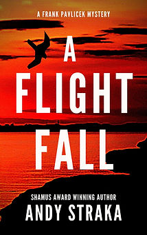 Copy of Copy of a flight fall-3.jpg