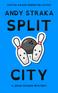 Copy of Copy of Copy of Copy of sp lit c