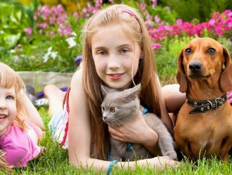 Animais de estimação e crianças: uma relação de muitos benefícios