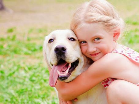 Pesquisa mostra diferenças e semelhanças entre tutores de cães e gatos.