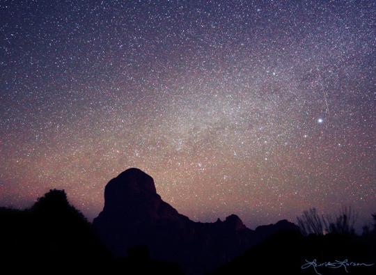 A Stellar Artistic Journey