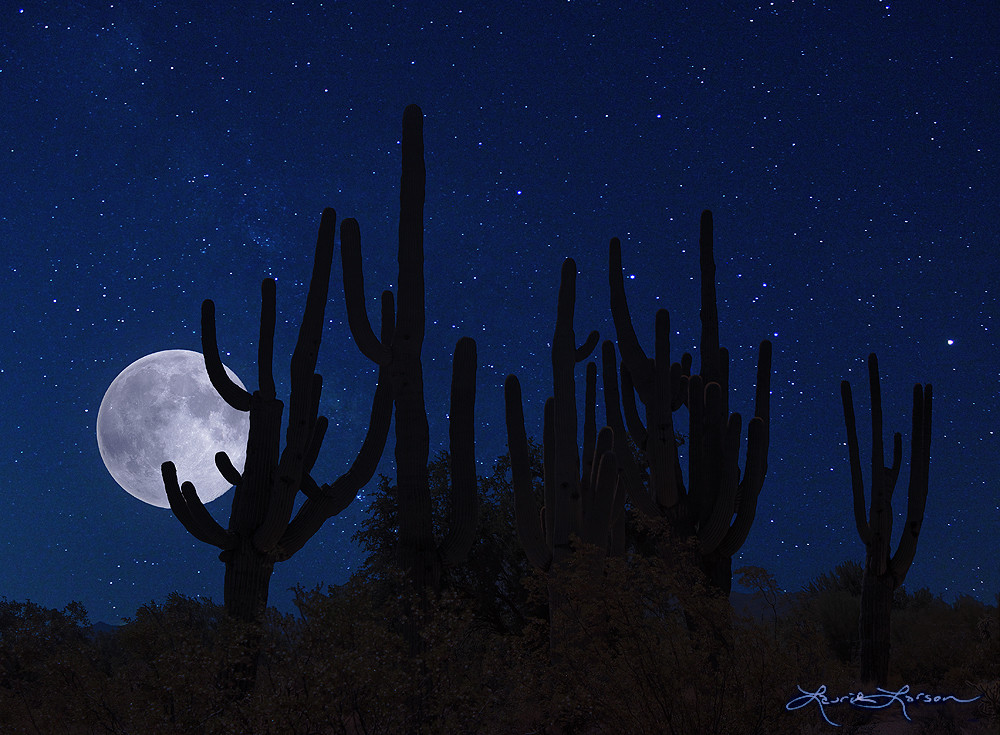 Full Moon over Tucson by Laurie Larson