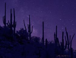 Marana nights - Photo by Laurie Larson