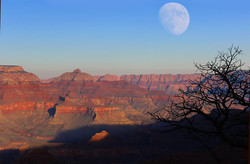 Grand Canyon Moonrise - Photo by Laurie Larson