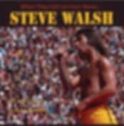 When They Call Out Your Name - Steve Walsh