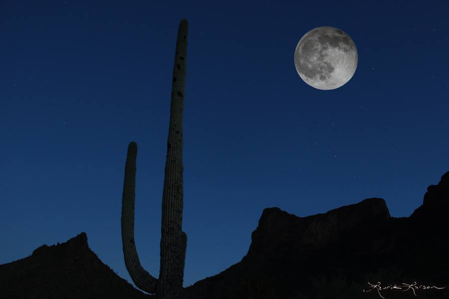 Full Moon over Picacho Peak by Laurie Larson