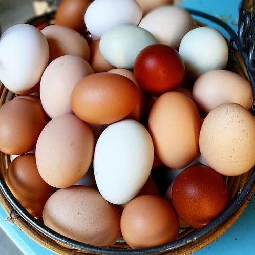 A Dozen Fresh Eggs