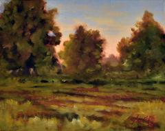 Field and Tree Study