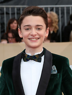 Stranger Things' Noah Schnapp (TikTok)