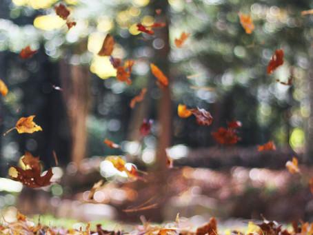 Podzimní blues