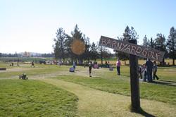 Barnyard Golf