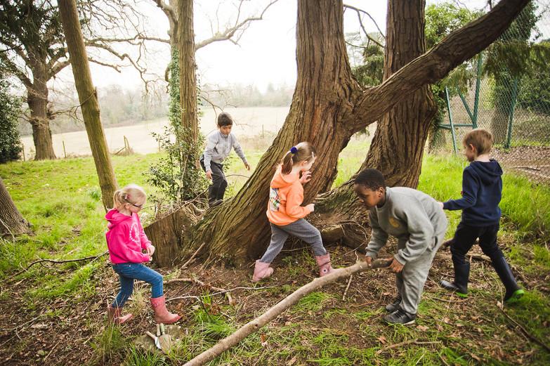 Newbold Forest School Y1-2-89 web.jpg