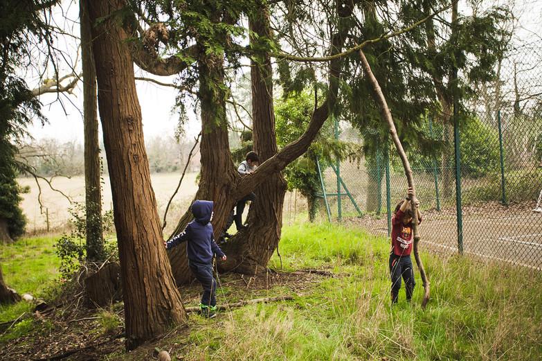 Newbold Forest School Y1-2-93 web.jpg