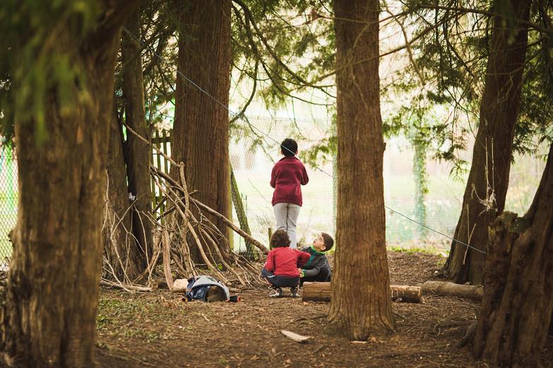 Newbold Forest School Y1-2-77 web.jpg