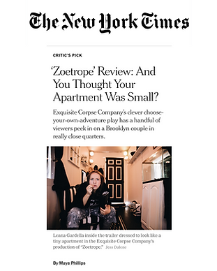 nyt image.png