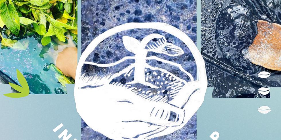 Natural Dye Symposium Session #1: Indigo Shade Map