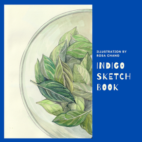Mini Indigo Pigment Extraction Process from Rosa's Indigo Sketchbook