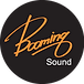 booming sound 원형 logo.png