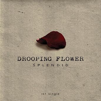Drooping_Flower'_SPLENDID.jpg