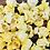 Thumbnail: Honey Mustard