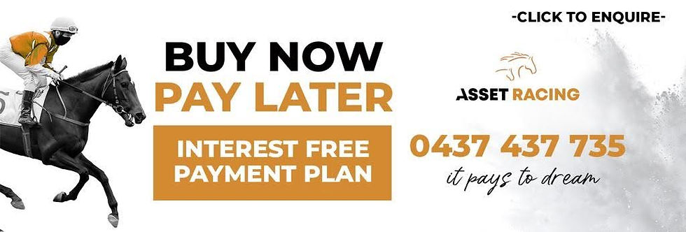 Buy Now Pay Later - Email Banner.jpg
