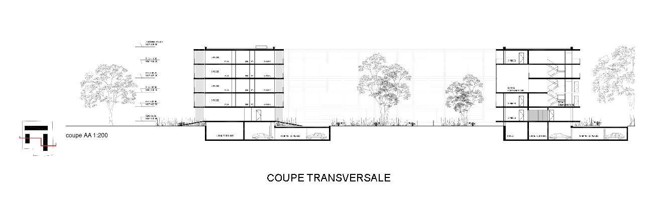 05_THO_CoupeTransversale-page-001