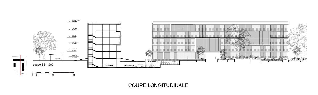 04_THO_CoupeLongitudinale-page-001