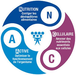 nutrition-cellulaire.jpg