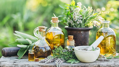 plante-medicinale (1).jpg