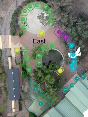 Nut Tree East Map.jpg
