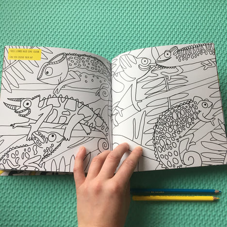 Reptile activity book