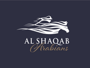 Al Shaqab Arabians - Best Performers