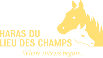 Lieu des champs logo anglais.png