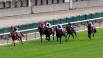 Ruler of the World - Prix Foy - 14/09/14 - Longchamp