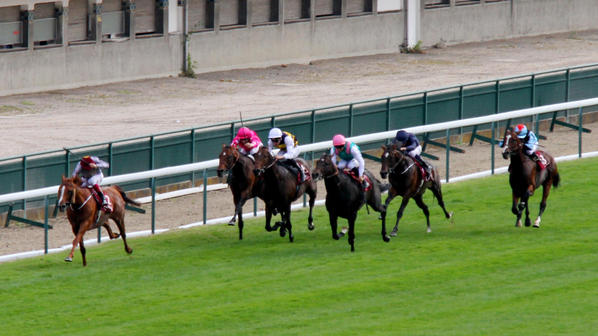 Ruler of the World - Prix Foy - 14/09/14 - Longchamp