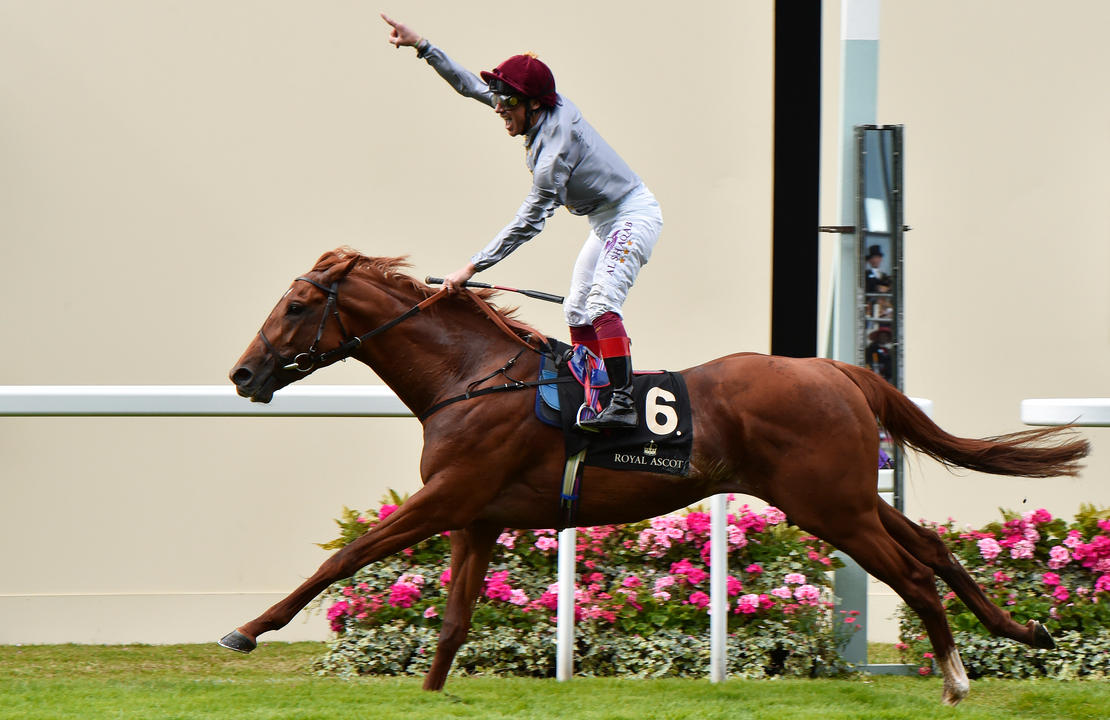 5221072 Ascot 14Jun16 Galileo Gold wins