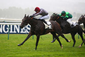 Wooded Deauville Maiden
