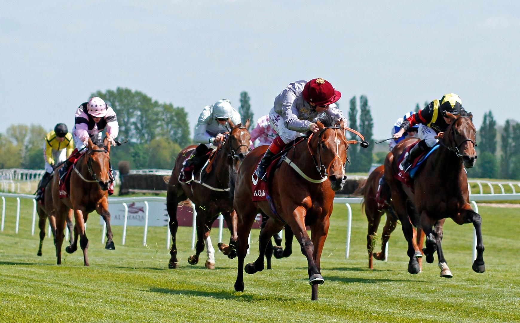 5201006 Newbury 14May16 Mehmas wins The