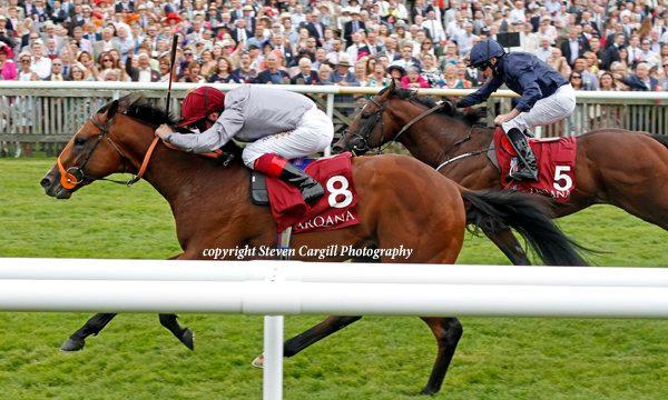 Mehmas Arqana July Stakes (5).jpg