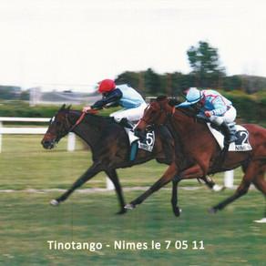 TINOTANGO