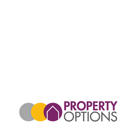 Property Options .png