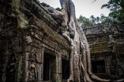 Chart Photography Cambodge