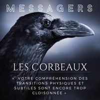 """Les corbeaux """"messagers"""""""
