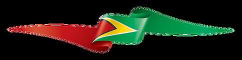 GUYANA-FLAG.png