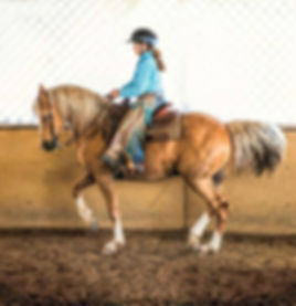 Cowboy Dressage rider performs a piaffe