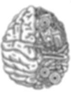 cerveauNB.jpg