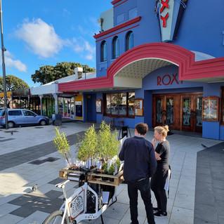 Gardenstar - Mirimar - Wellington.jpg